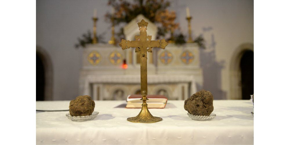 les-plus-belles-truffes-deposees-sur-l-autel-1579453806